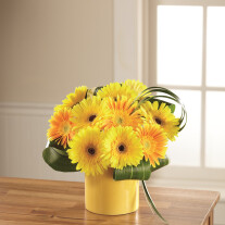 The FTD Sunny Surprise Bouquet C5-5156